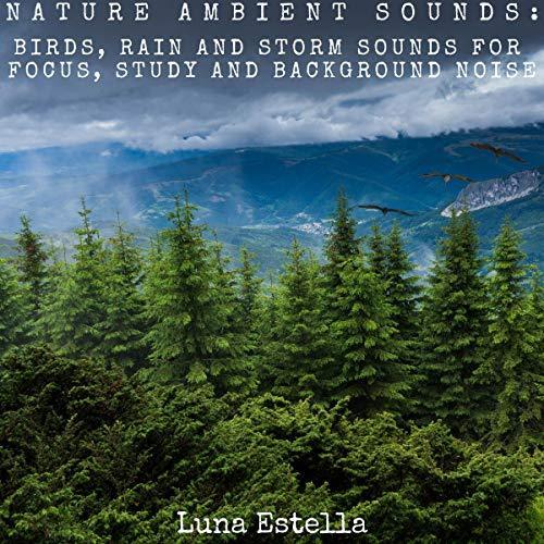 Art for 4 - Nature Ambient Sounds by Luna Estella