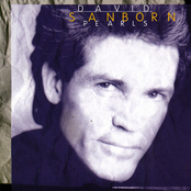 Art for Try A Little Tenderness by David Sanborn