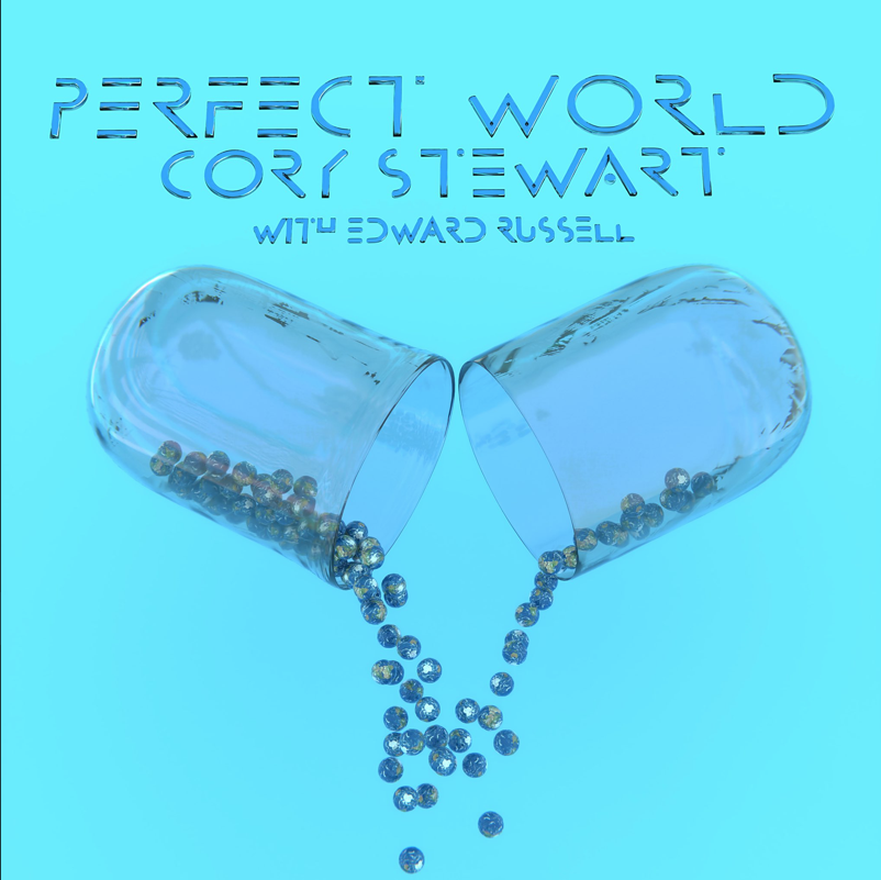 Art for Perfect World (Blue Pill Edition) by Cory Stewart with Edward Russell