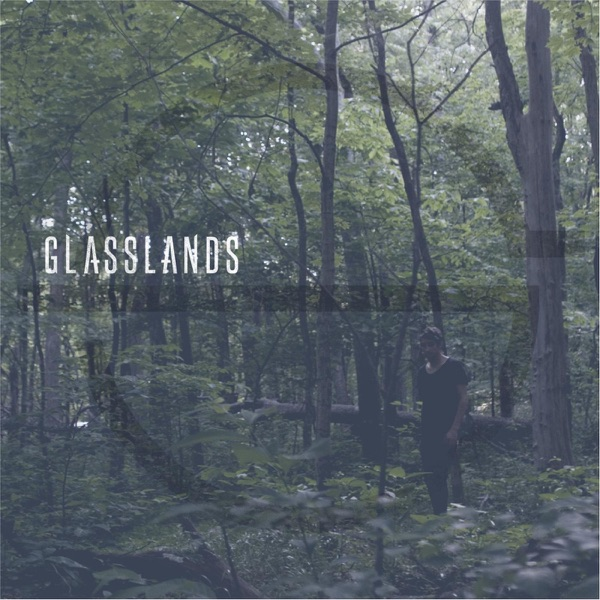 Art for Meaningless by Glasslands