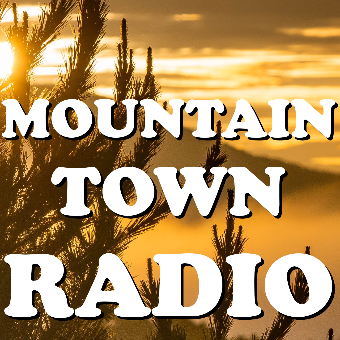 Art for Find Us Online by Mountain Town Radio