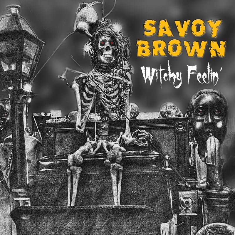 Art for Guitar Slinger by Savoy Brown