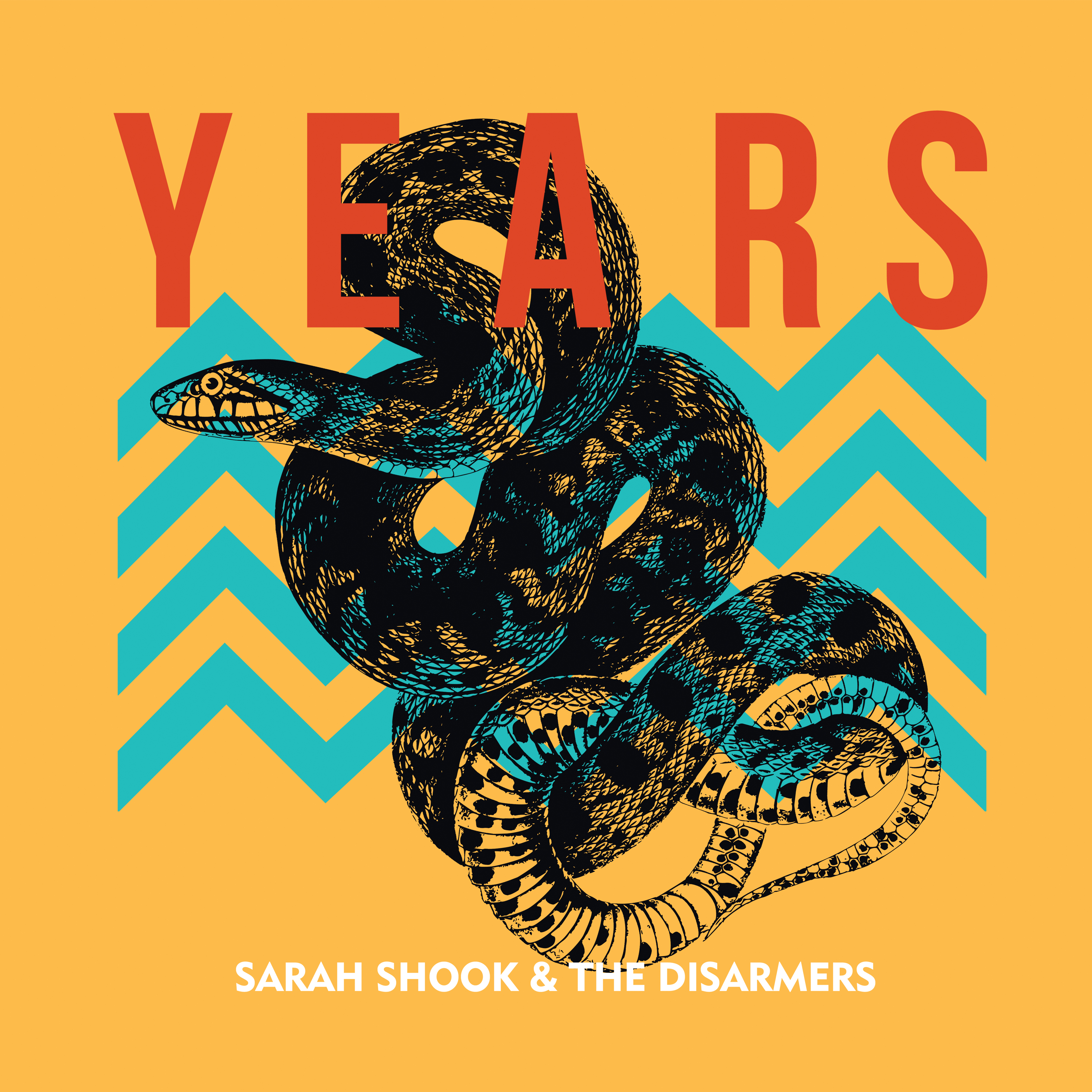 Art for The Bottle Never Lets Me Down by Sarah Shook & the Disarmers