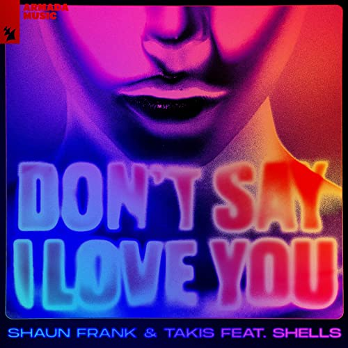 Art for Don't Say I Love You by Shaun Frank & Takis ft. SHELLS
