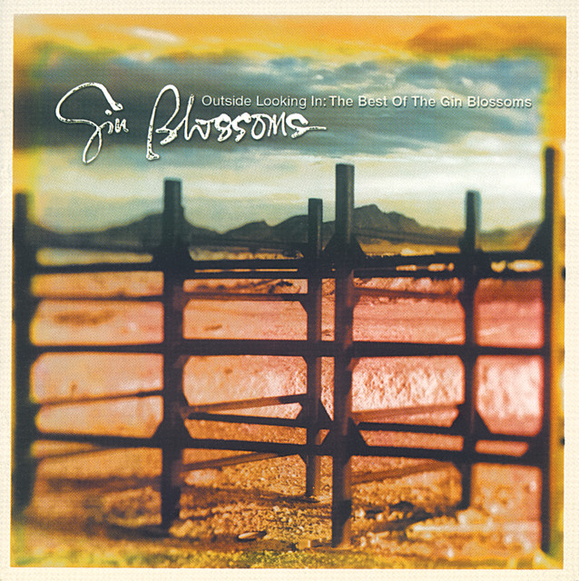 Art for Til I Hear It From You by Gin Blossoms