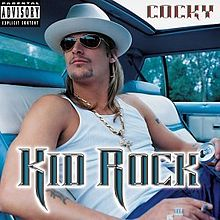Art for Picture by Kid Rock feat Sheryl Crow