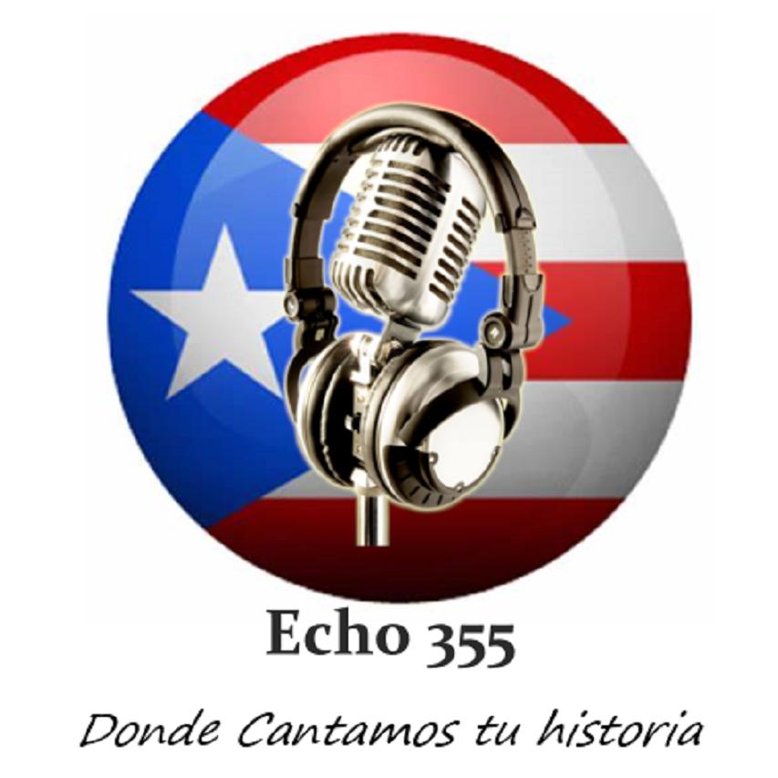 Echo 355 logo