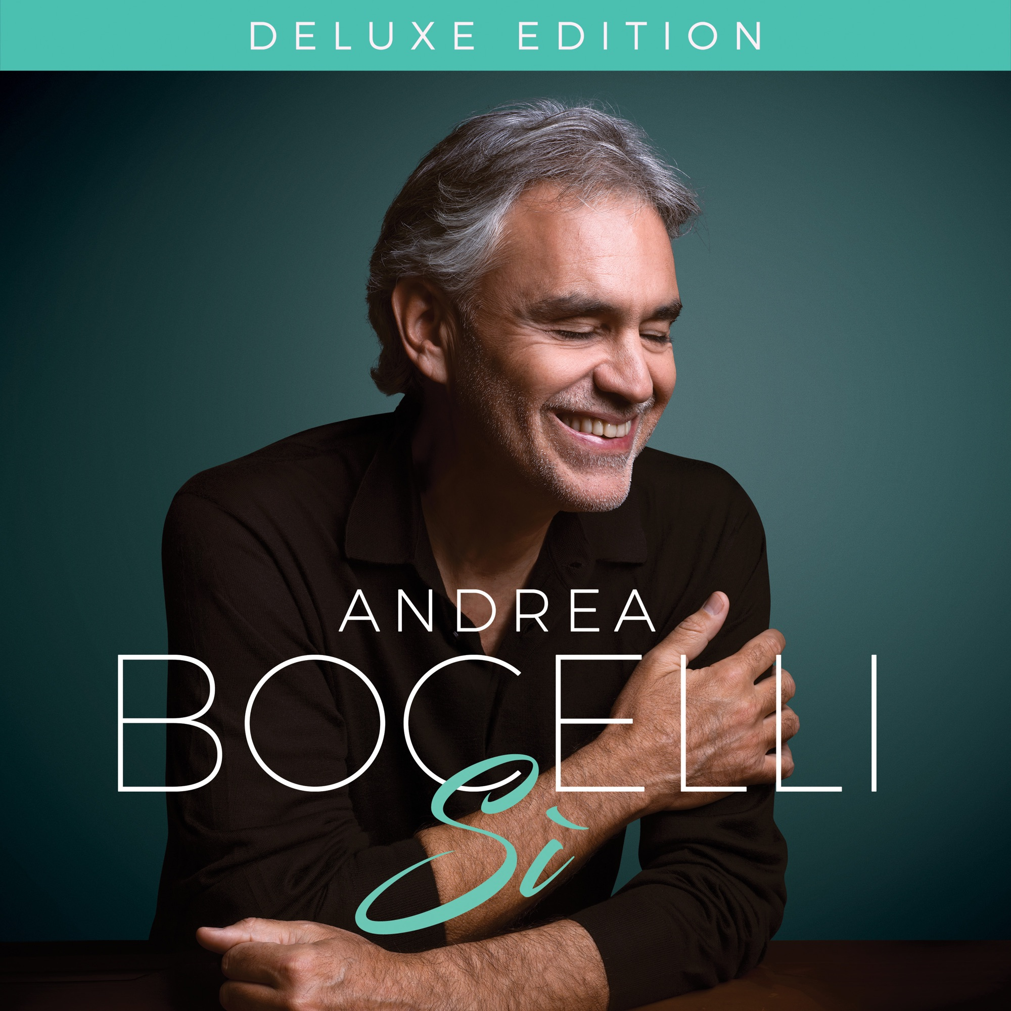Art for We Will Meet Once Again by Andrea Bocelli & Josh Groban