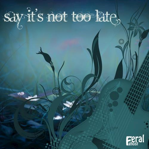 Art for Say Its Not Too Late (Original Mix) by Feral Ghost