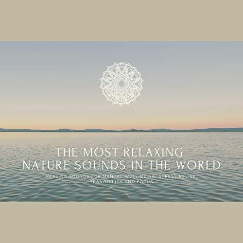 Art for 26 - The Most Relaxing Nature Sounds in the World by Joshua Armentrout