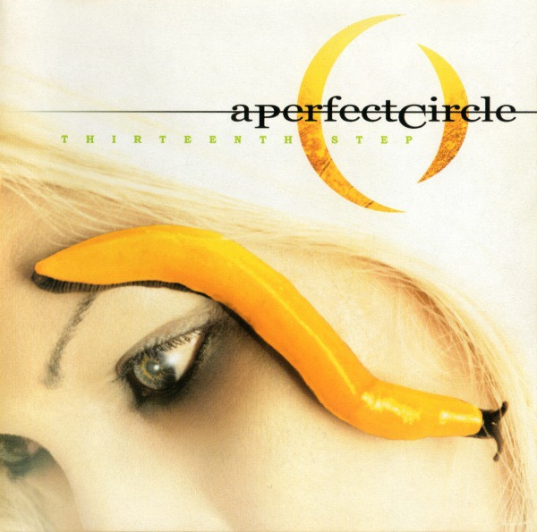 Art for The Outsider by A Perfect Circle