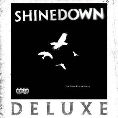 Art for Second Chance by Shinedown