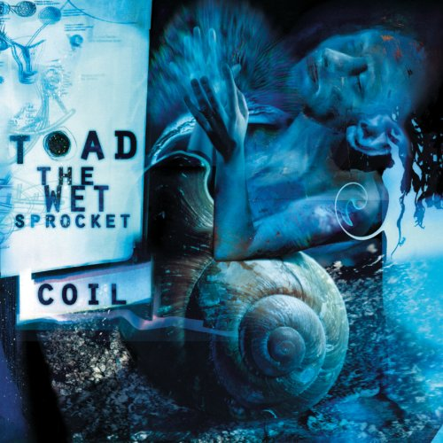 Art for Dam Would Break by Toad the Wet Sprocket