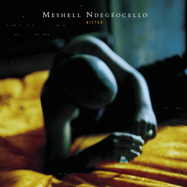 Art for Fool of Me by Meshell Ndegeocello