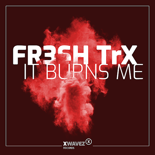 Art for It Burns Me (Extended Mix) by Fr3sh Trx