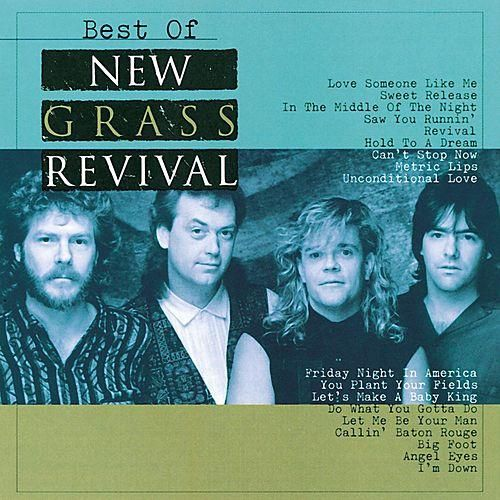 Art for Can't Stop Now by New Grass Revival
