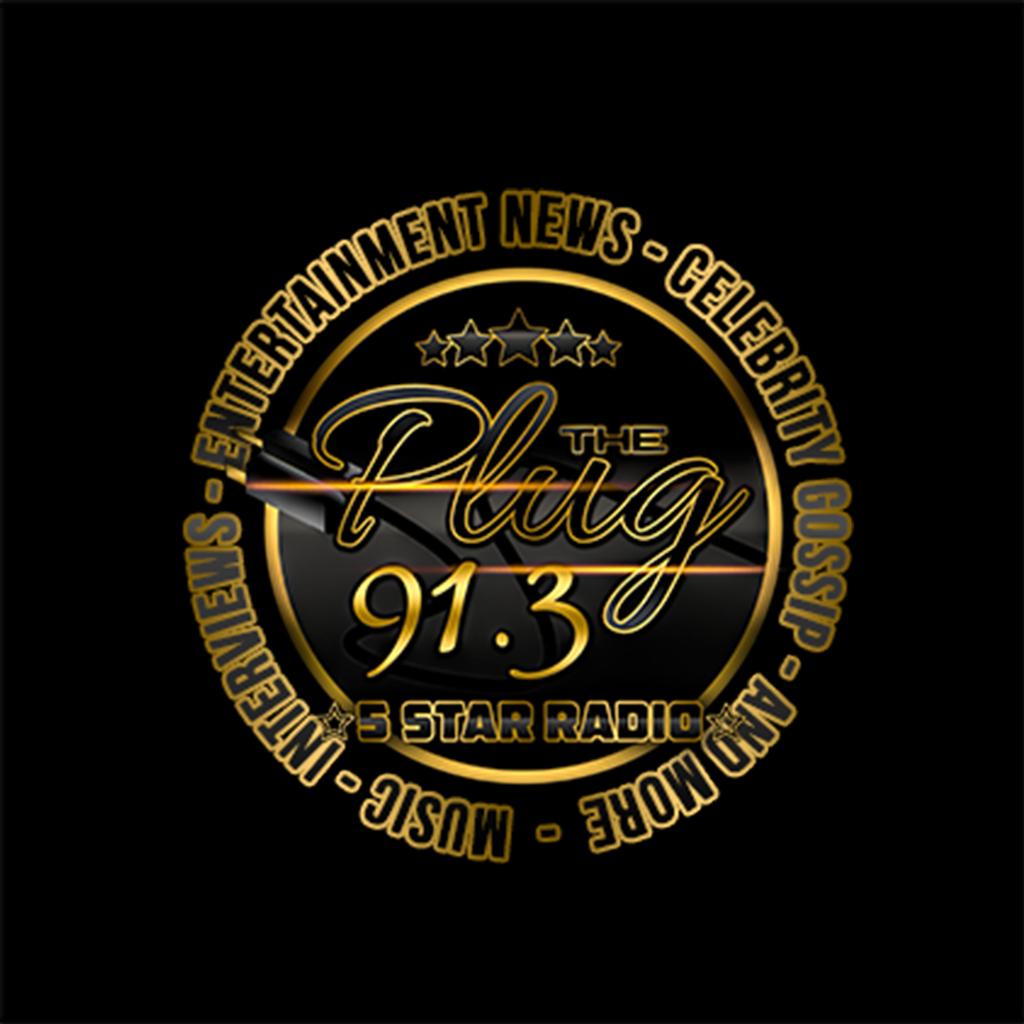 91.3The Plug Radio logo