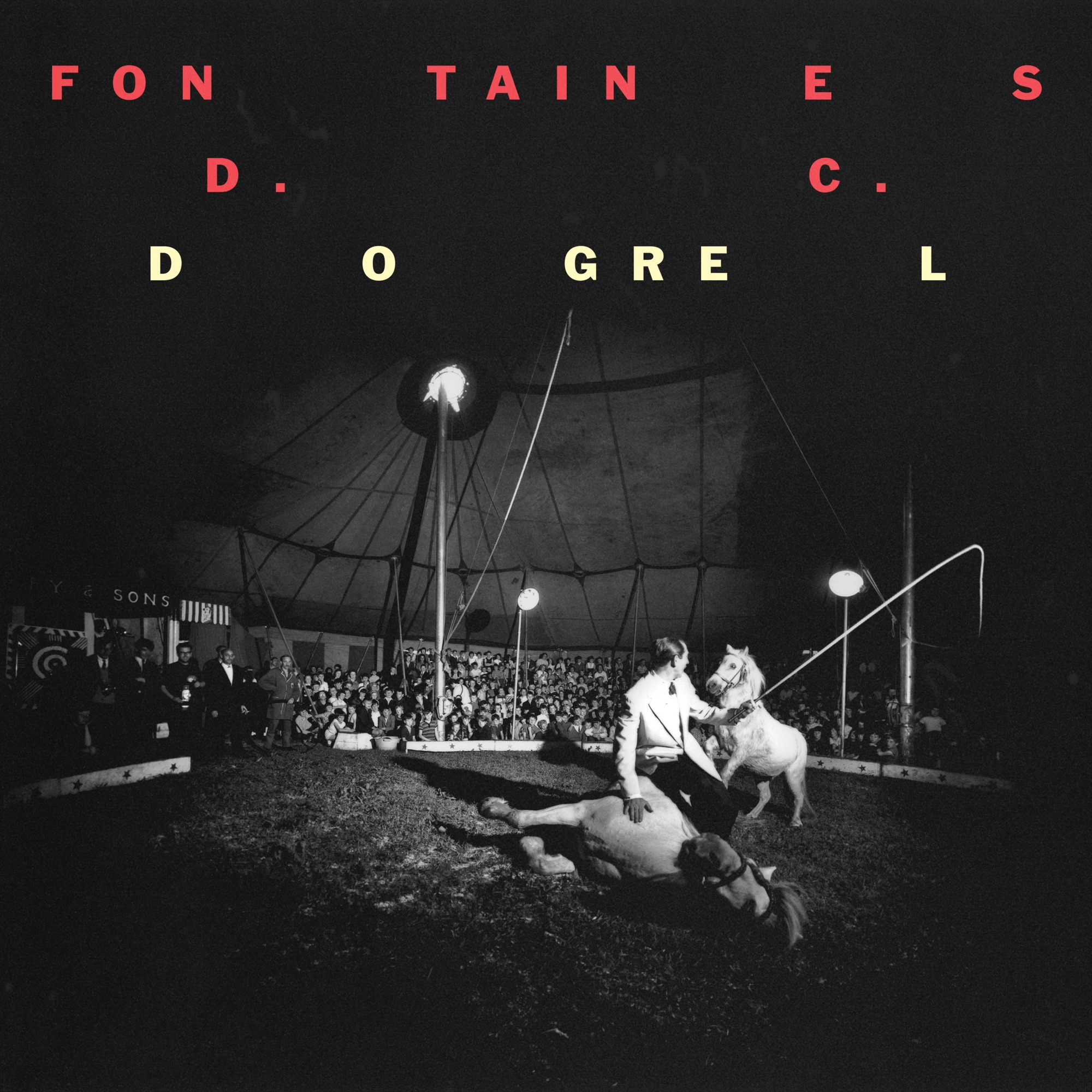 Art for Hurricane Laughter by Fontaines D.C.